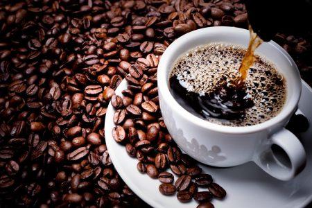 Nespresso Krups Expert The Expert Coffee Maker Nespresso Krups Available Online